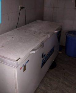 thanh lý tủ đông 800 lít