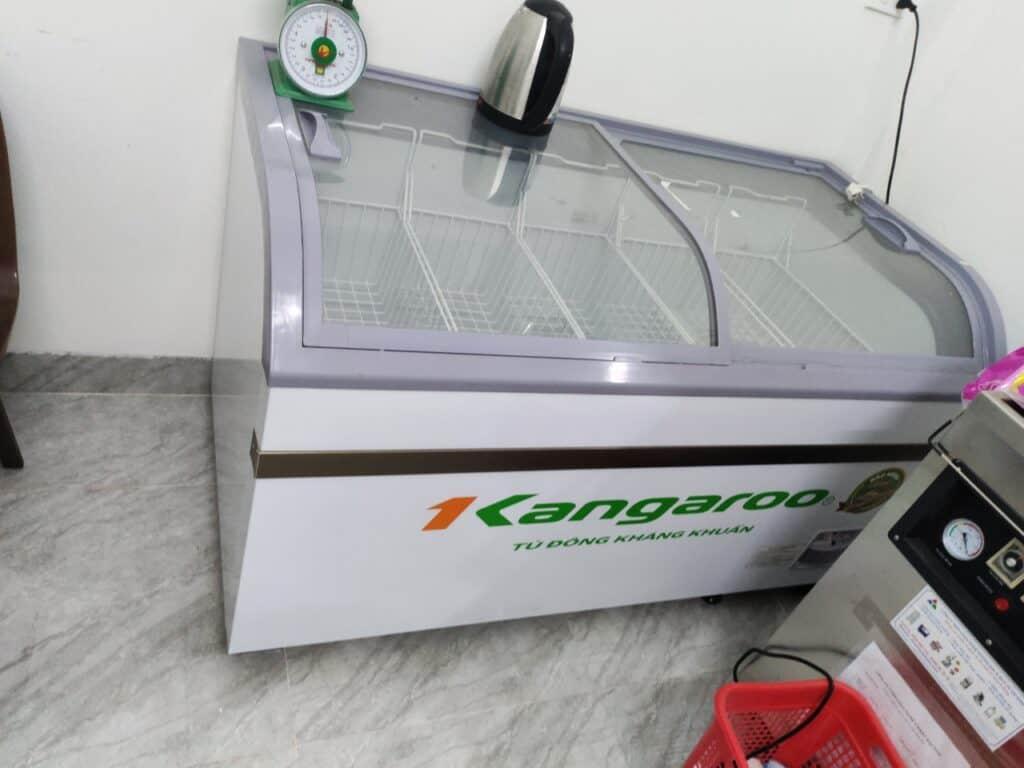 Tủ đông Sanaky 600 lít cũ